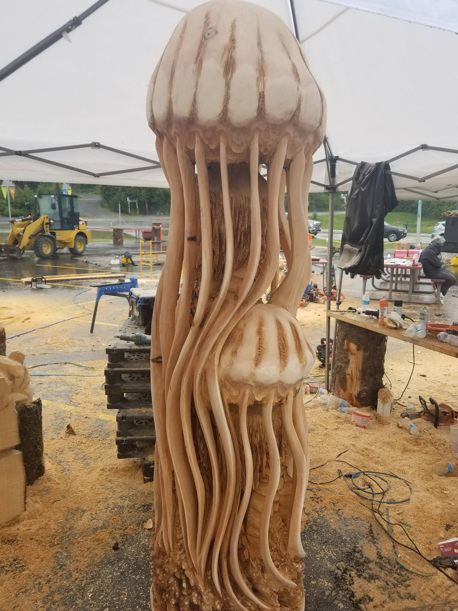 Alaska cup chainsaw carving event results sound and